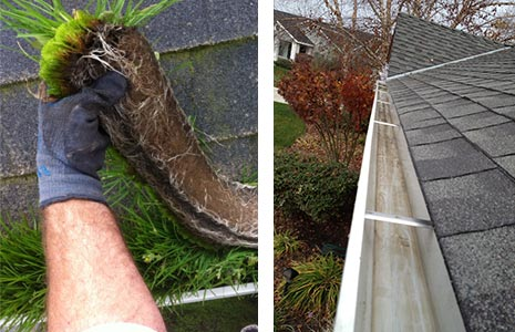 gutter cleaning pressure washing services